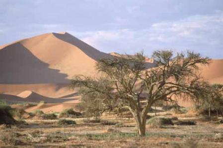 namibiajpg