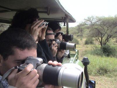 que prismaticos llevar a un safari