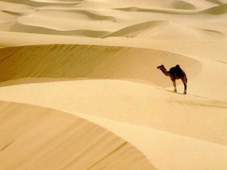 desierto-africa.jpg