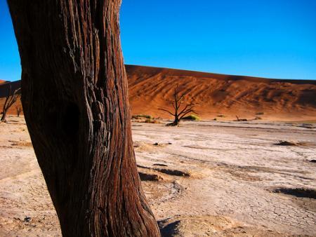namibia10.jpg