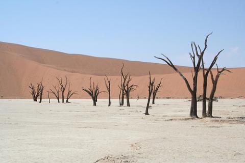 namibia-noticias.jpg