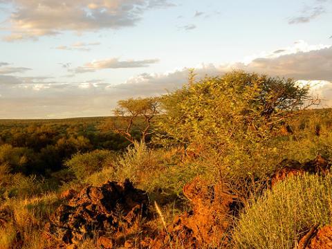 namibia-desierto