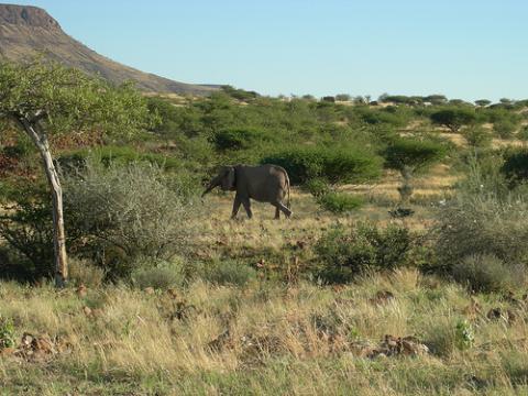 namibia-africa.jpg
