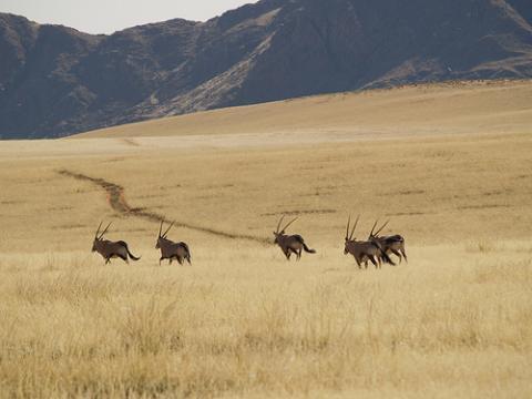 namibia-montanas.jpg